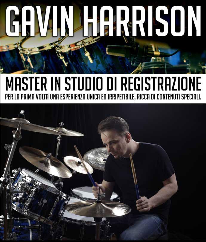 Gavin-master-web